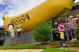 The Big Banana - One Spot Print